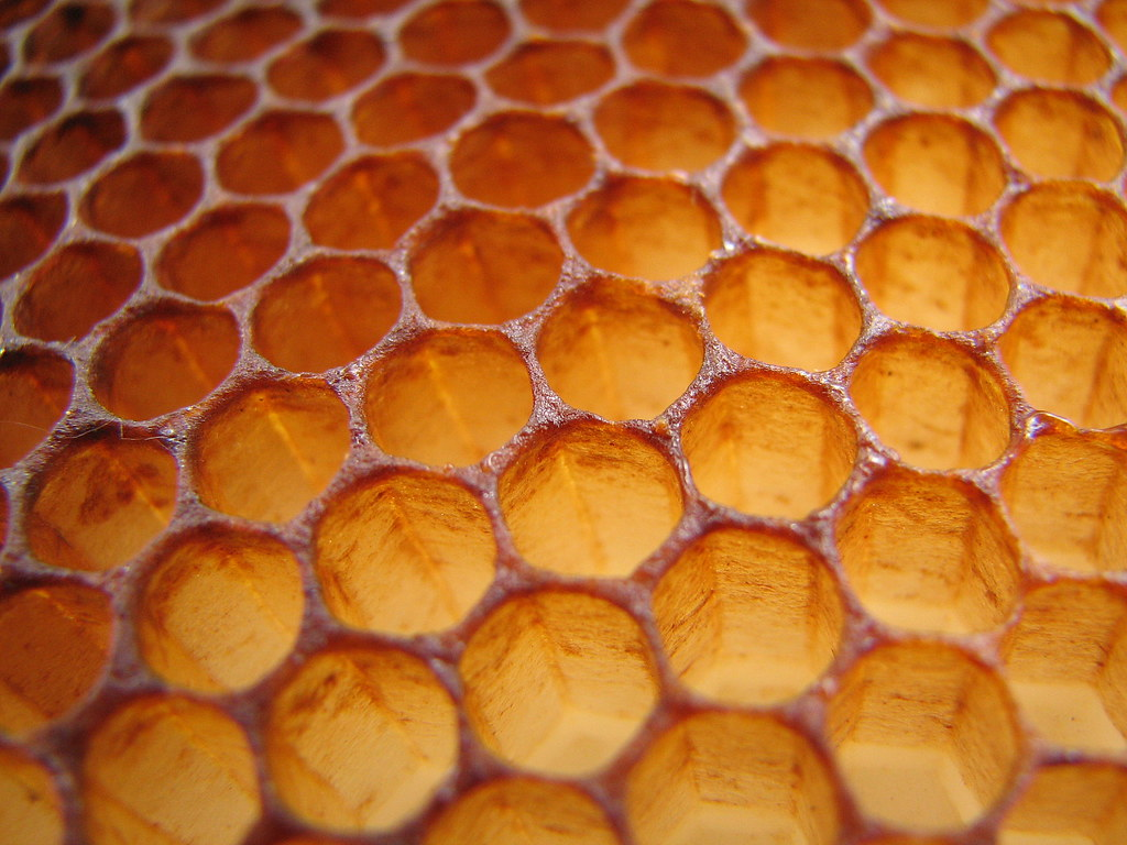 close up view of the structure of a beehive with the hexagonal shaped regions packed tightly together